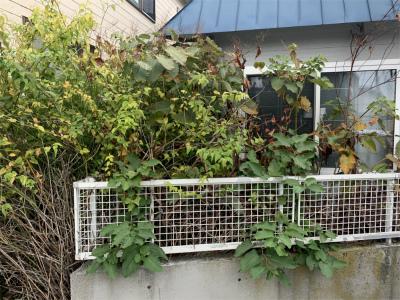 函館市 中道 駐車場 外構工事