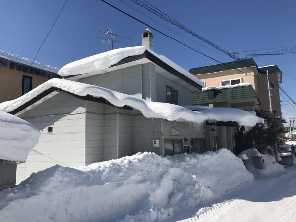 たっぷりと雪が積もった様子