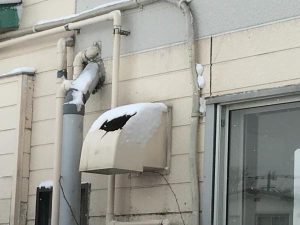雪で破損した換気扇排気フード