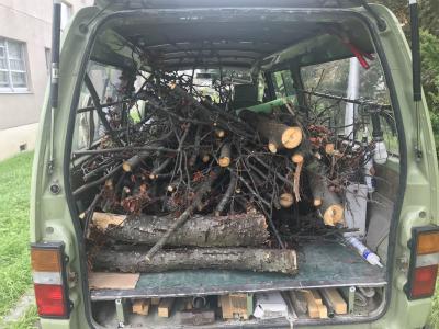 切断した樹木の回収