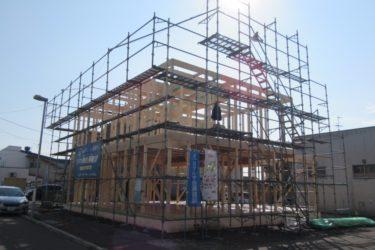 函館市花園町の新築物件の建て方、木造在来工法