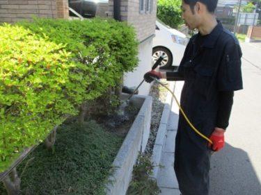 函館市榎本町の住宅でアリ駆除と薬剤散布
