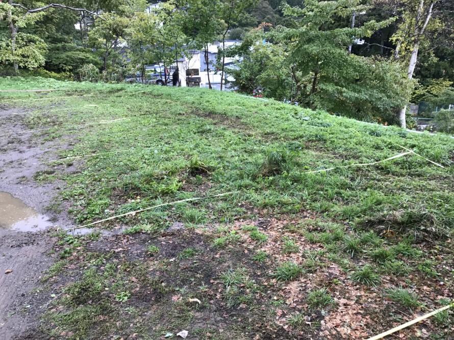 これで草刈りのラインが完成しました